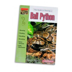 The guide to owning a Ball Python