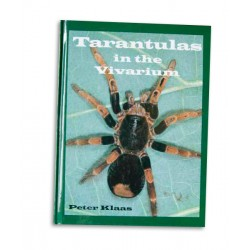 Tarantulas in the Vivarium