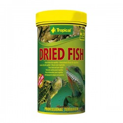 Tropical Dried Fish