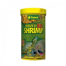 Tropical FD River Shrimp