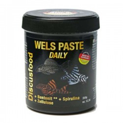 Daily Paste Wels Special
