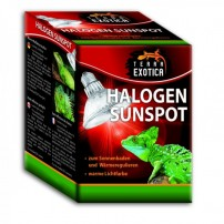 Halogen Sunspot