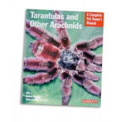 Tarantulas a Other Arachnids