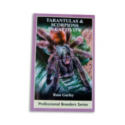 Tarantulas & Scorpions In Captivity