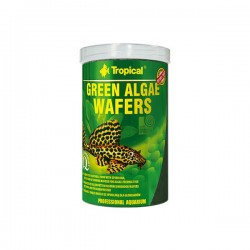 Tropical Green Algae Wafers