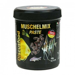 Muschelmix Pasta