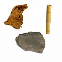 Drvo, grane, kamen